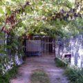 Гостевой дом «ОСТРОВ Джубга»